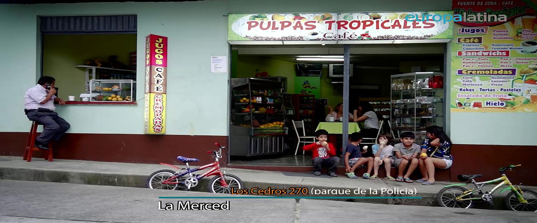 Pulpas Tropicales de la Finca Santa Cruz
