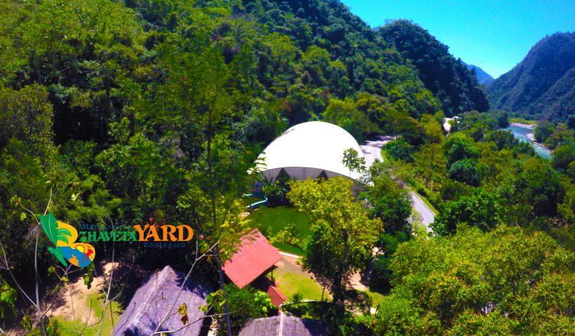 Spot Mariposario Zhaveta Yard