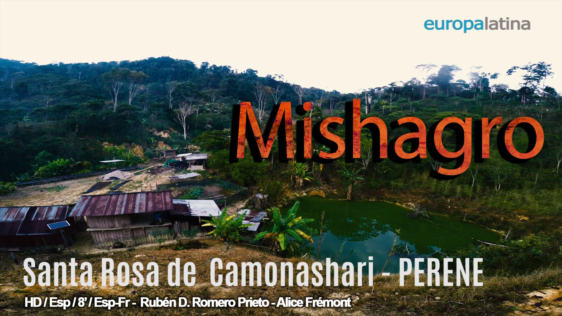 mishagro cooperativa cafetalera peruana
